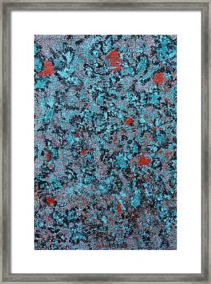 Esoteric Framed Print by James Mancini Heath