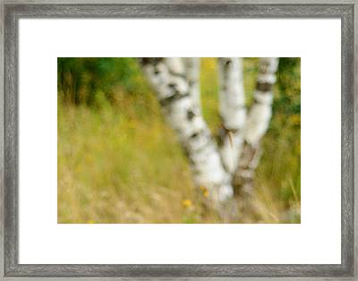 Essential. Summer Time. Impressionism  Framed Print by Jenny Rainbow