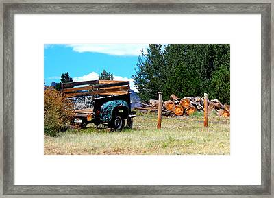 Estes Park Back Yard Framed Print
