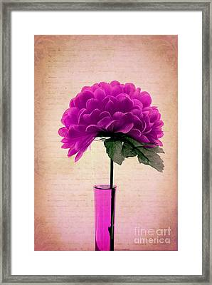 Estillo - 06t11 Framed Print by Variance Collections