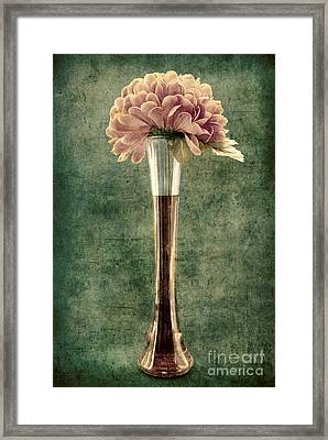 Estillo Vase - S02et01 Framed Print by Variance Collections