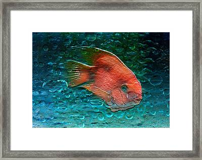 Etched Gold Framed Print by Barbara  White