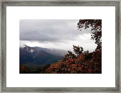 Etheral Framed Print