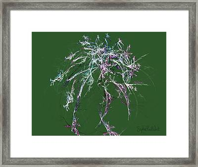 Ethereal Being Framed Print by Stephen Paul West