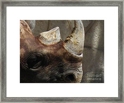 Eunuch Framed Print by Joe Jake Pratt