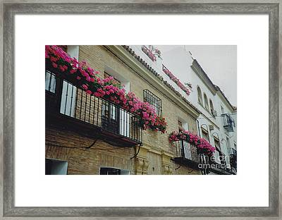 European Flowerboxes Framed Print by Barbara Plattenburg