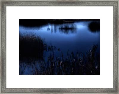 Evening At The Duck Pond Framed Print by Utah Images