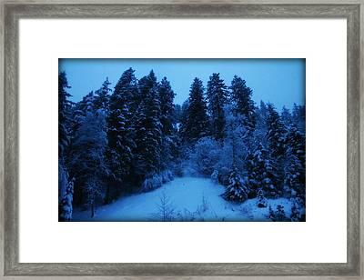 Evening Blue Framed Print by Donna Duckworth