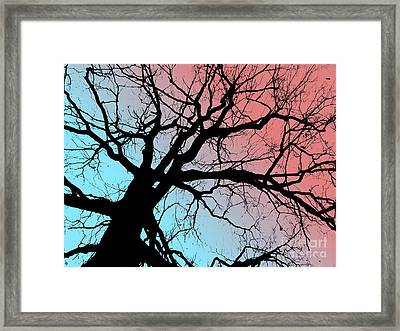 Evening Breaks Framed Print by Amy Sorrell