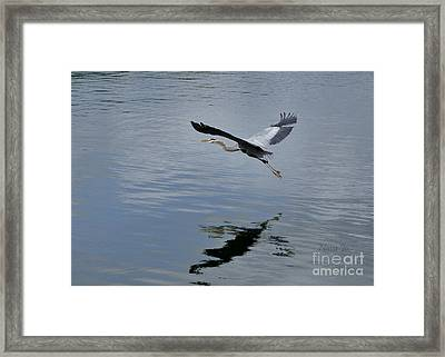 Framed Print featuring the photograph Evening Flight Reflection by Nava Thompson