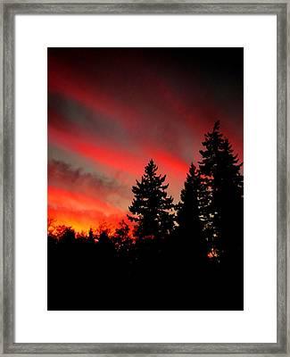 Evening Glow Framed Print by Kevin D Davis