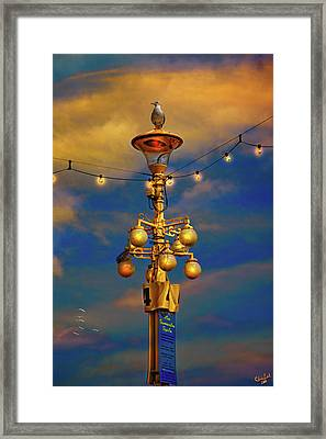 Evening On The Seafront In Eastbourne Framed Print by Chris Lord