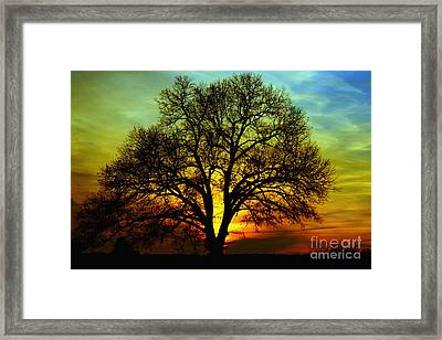 Evening Palette Framed Print