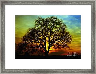 Evening Palette Framed Print by Benanne Stiens
