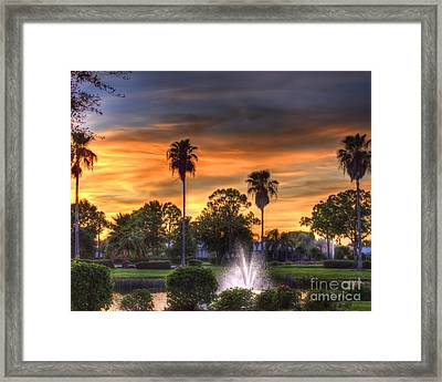 Evening Palms Framed Print