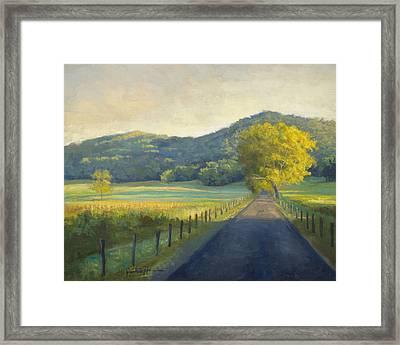 Evening Stroll Framed Print