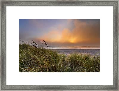 Evening's Golden Fog Framed Print by Debra and Dave Vanderlaan