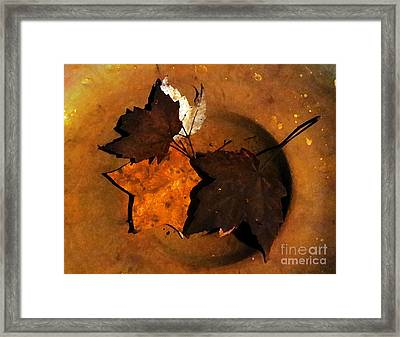 Every Leaf Is A Flower Framed Print by Patricia Januszkiewicz