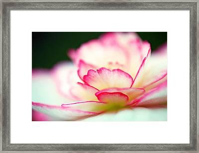 Every Moment... Framed Print by Melanie Moraga
