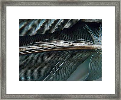 Every Shade Framed Print by Chris Berry