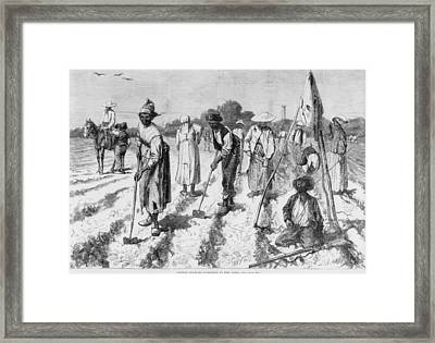Ex-slaves, Working In A Gang Framed Print