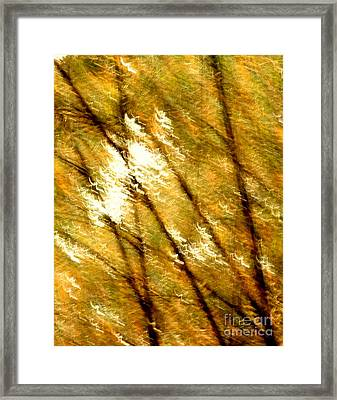Exaltation Framed Print by Vishakha Bhagat