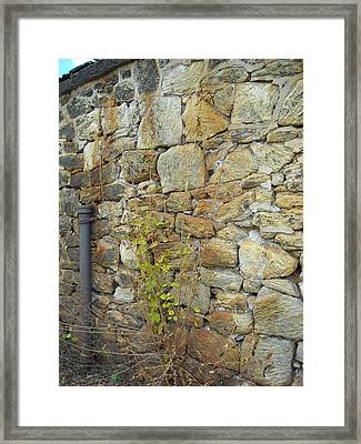 Excell Of Time 2 Framed Print