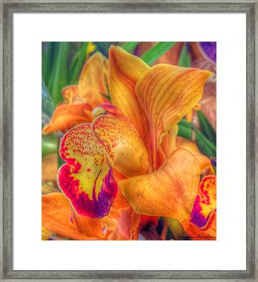 Exotic Embrace Framed Print by Jeanean Gendron