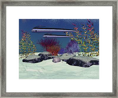 Exotic Fish Swim Over A Colorful Reef Framed Print by Corey Ford