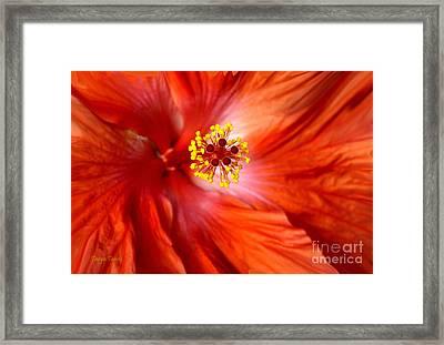 Explosive..... Framed Print