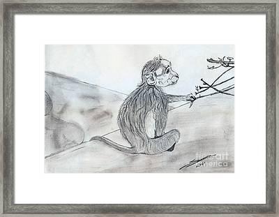 Expression Framed Print by Shashi Kumar