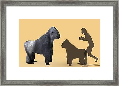Extinct Giant Gorilla Framed Print by Christian Darkin