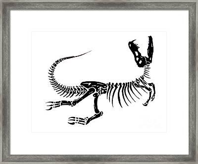 Extinction Framed Print by Jack Norton