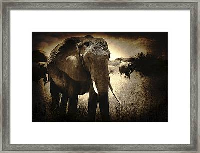 Eye Catching Moments Framed Print by Jess Easter