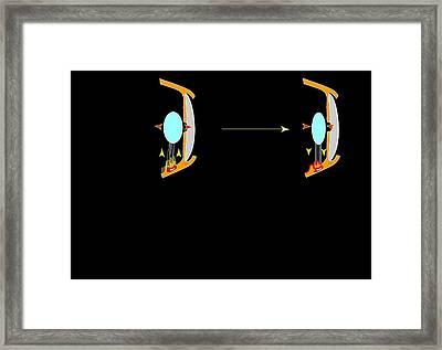 Eye Lens And Accommodation, Artwork Framed Print by Francis Leroy, Biocosmos