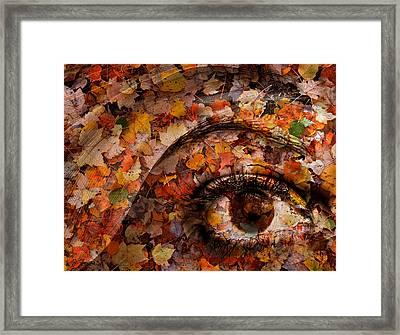 Eye Of Autumn Framed Print by Joe Bonita
