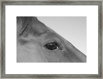 Framed Print featuring the photograph Eye Of The Universe by Carolina Liechtenstein