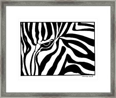 Eye Of The Zebra Framed Print