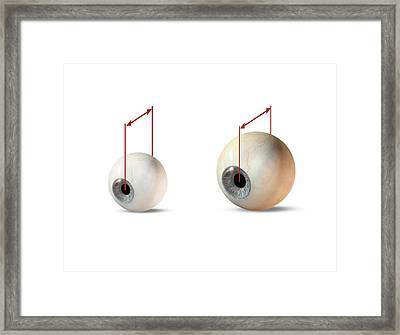 Eye Size Comparison, Artwork Framed Print by Claus Lunau