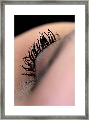 Eyelashes Framed Print by JL Creative  Captures