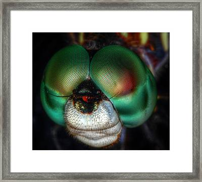 Eyes Of The Dragon Framed Print