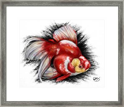 F Ck Nemo Framed Print by Pete Tapang