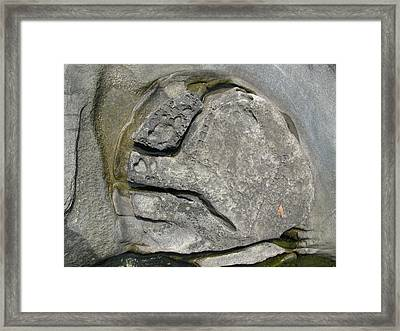 Framed Print featuring the photograph Face In The Rock by Brian Sereda