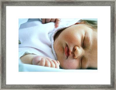 Face Of A Premature Baby Wrapped In Warm Clothing Framed Print by Mauro Fermariello