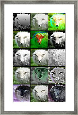 Facets Of Innocence Framed Print