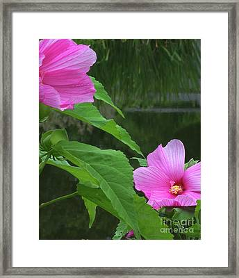Facing The Pond Framed Print