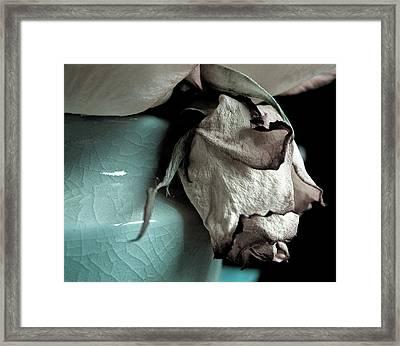 Fad Framed Print by Monroe Snook
