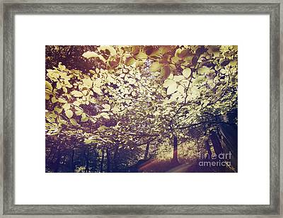 Fade Into You Framed Print by Violet Gray