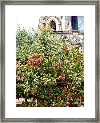 Faded Flowers Framed Print by David Peters