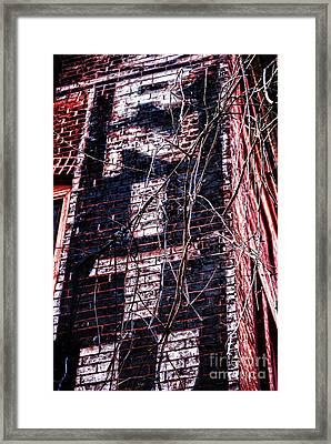 Faded Paint And Vines Framed Print